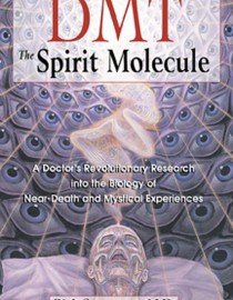 DMT-The-Spirit-Molecule