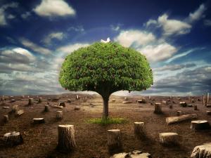 perceptia binelui si a raului din noi