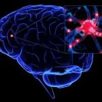 DEZVOLTA-TI INTELIGENTA! Cum sa-ti antrenzei creierul pentru a avea performantele pe care ti le doresti