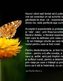 DESPRE-JUDECĂȚI-ȘI-VINDECARE