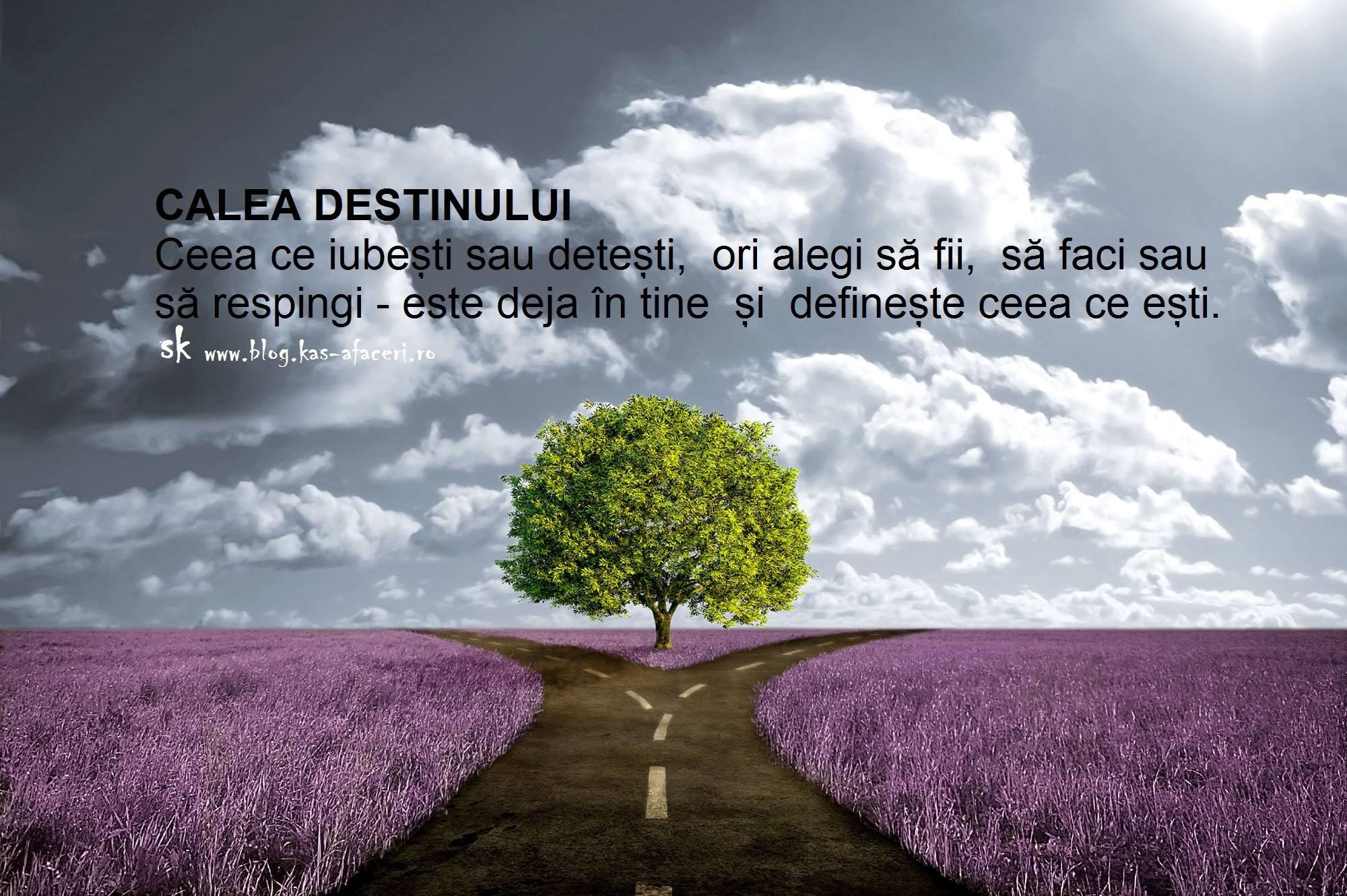calea destinului