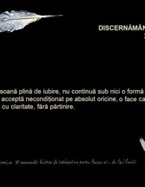 discernamant clar