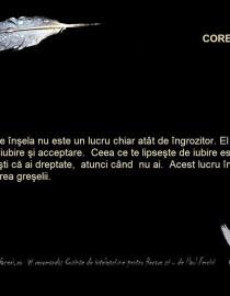corectare