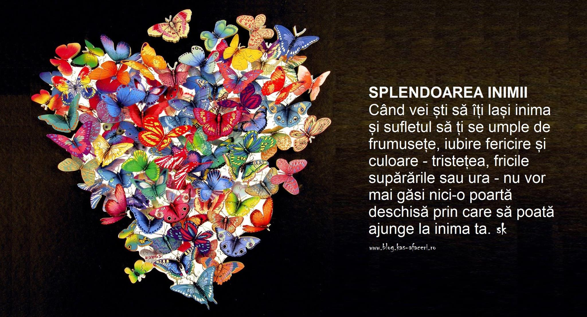 splendoarea inimii