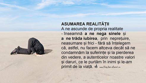 asumarea realitatii