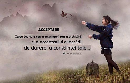 acceptare