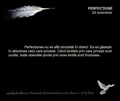 perfectiune