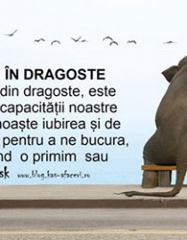 rataciti in dragoste